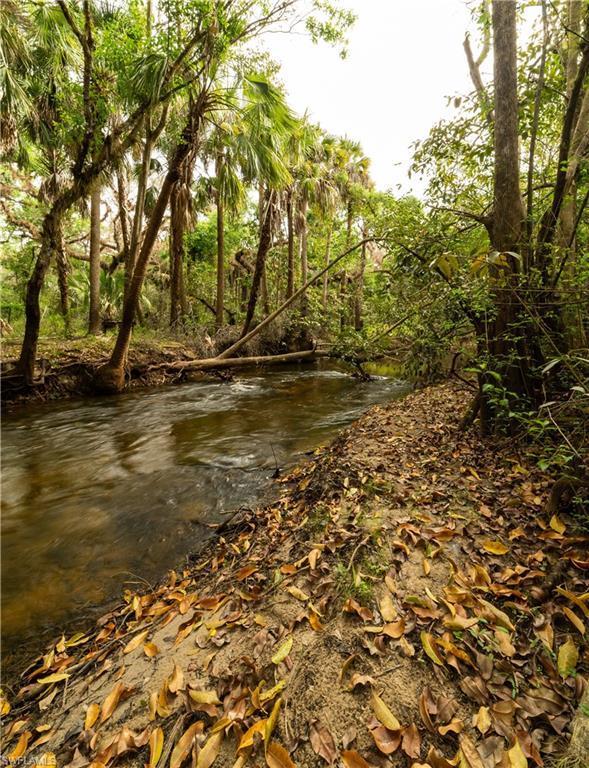 14751 / 14791 Orange River Rd, Fort Myers, FL 33905 (MLS #219017233) :: John R Wood Properties