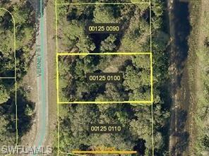 1816 Verney St, Lehigh Acres, FL 33972 (MLS #219020158) :: RE/MAX Realty Group