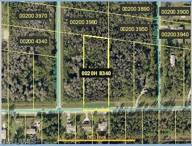 10261 Strike Ln, Bonita Springs, FL 34135 (MLS #219024267) :: RE/MAX Radiance