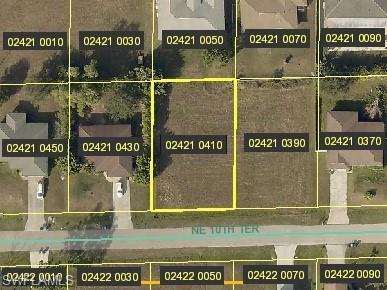 309 NE 10th Ter, Cape Coral, FL 33909 (MLS #219030390) :: John R Wood Properties