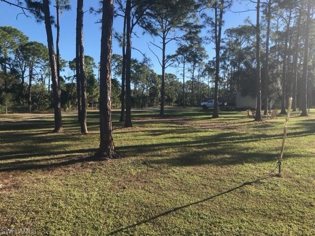 24001 Rodas Dr, Bonita Springs, FL 34135 (MLS #219030411) :: John R Wood Properties