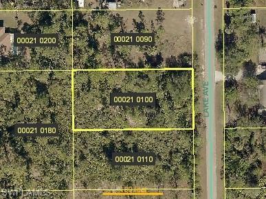 509 Lake Ave, Lehigh Acres, FL 33972 (#219030444) :: Southwest Florida R.E. Group LLC