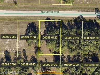 3916 NW 46th Ter, Cape Coral, FL 33993 (MLS #219030548) :: The Naples Beach And Homes Team/MVP Realty