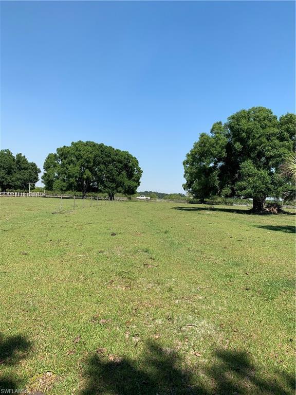 2587 SE Airport Rd, Arcadia, FL 34266 (MLS #219033511) :: Clausen Properties, Inc.