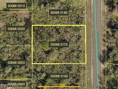 1919 Woodrow Ave, Lehigh Acres, FL 33972 (MLS #219034003) :: Sand Dollar Group