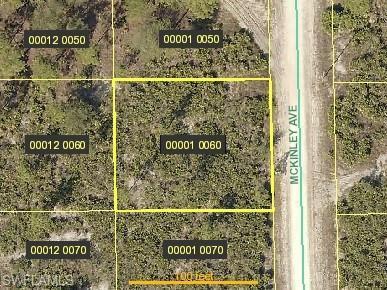 1613 Mckinley Ave, Lehigh Acres, FL 33972 (MLS #219034310) :: Palm Paradise Real Estate