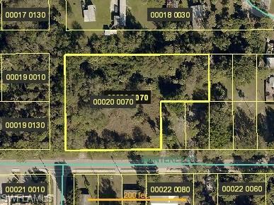 338 Monterey St, North Fort Myers, FL 33903 (MLS #219034904) :: Sand Dollar Group