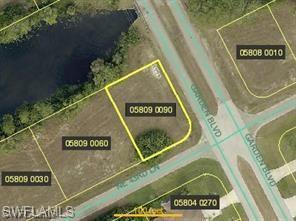 2329 NE 43rd Ln, Cape Coral, FL 33909 (MLS #219036747) :: Kris Asquith's Diamond Coastal Group