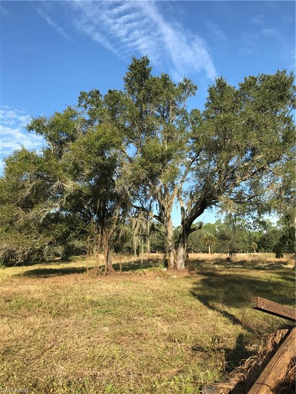 18241 Roberts Rd, North Fort Myers, FL 33917 (MLS #219040086) :: Clausen Properties, Inc.