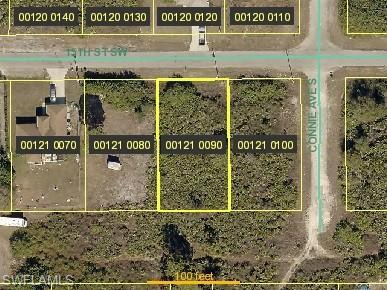 2603 15th St SW, Lehigh Acres, FL 33976 (MLS #219042596) :: RE/MAX Radiance
