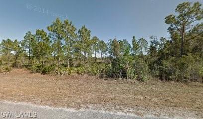 2120 Winnetka Dr, Lehigh Acres, FL 33972 (MLS #219042729) :: Clausen Properties, Inc.