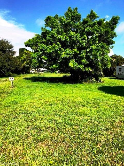 5103 Lexington Boulevard, Fort Myers, FL 33919 (MLS #219042910) :: #1 Real Estate Services
