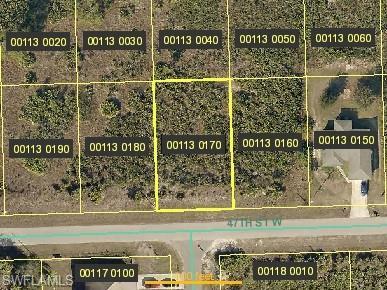 2614 47th St W, Lehigh Acres, FL 33971 (MLS #219044489) :: Kris Asquith's Diamond Coastal Group