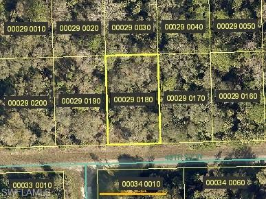 3614 48th St W, Lehigh Acres, FL 33971 (MLS #219047167) :: Palm Paradise Real Estate