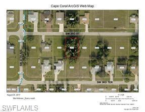 3614 SW 3rd St, Cape Coral, FL 33991 (MLS #219048585) :: Kris Asquith's Diamond Coastal Group