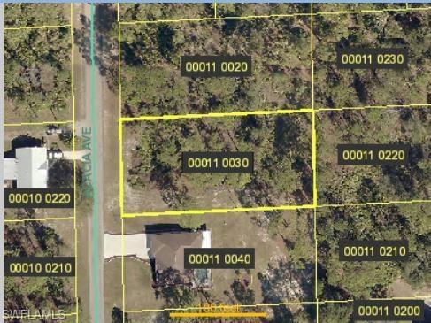 1618 Acacia Ave, Lehigh Acres, FL 33972 (MLS #219049983) :: Palm Paradise Real Estate