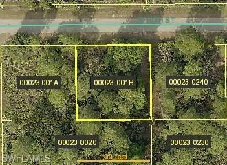 3602 E 10th St, Lehigh Acres, FL 33972 (MLS #219050084) :: Palm Paradise Real Estate