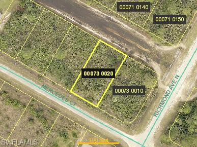 457 Mercedes Ct, Lehigh Acres, FL 33972 (MLS #219050119) :: Sand Dollar Group