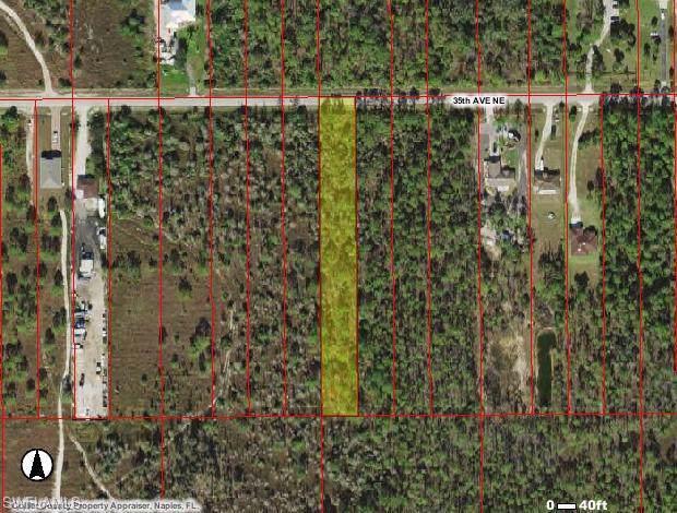 TBD 35th Ave NE, Naples, FL 34120 (MLS #219059878) :: Royal Shell Real Estate