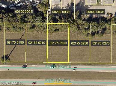 915 Kismet Pky E, Cape Coral, FL 33909 (MLS #219060771) :: RE/MAX Realty Group