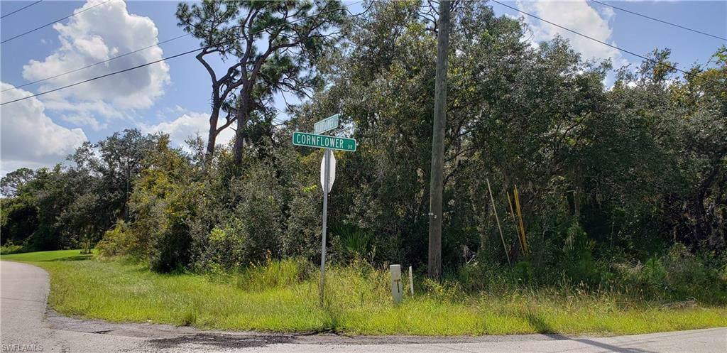 3200 Cornflower Drive - Photo 1