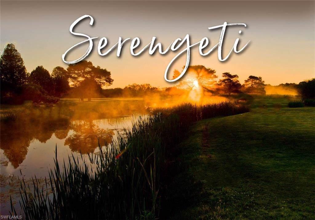 17109 Serengeti Circle - Photo 1