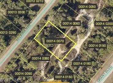 317 Selkirk Ave, Lehigh Acres, FL 33974 (#219064120) :: Southwest Florida R.E. Group Inc