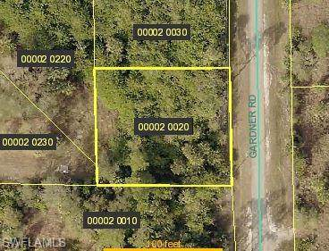 2460 Gardner Rd, Alva, FL 33920 (#219071634) :: The Dellatorè Real Estate Group