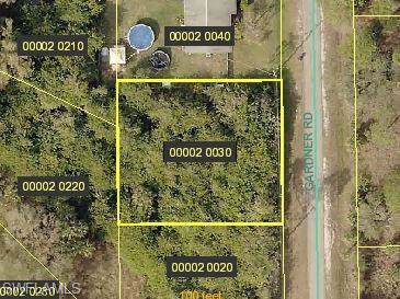 2440 Gardner Rd, Alva, FL 33920 (#219071647) :: The Dellatorè Real Estate Group