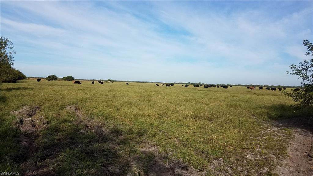 16001 County Road 835 - Photo 1