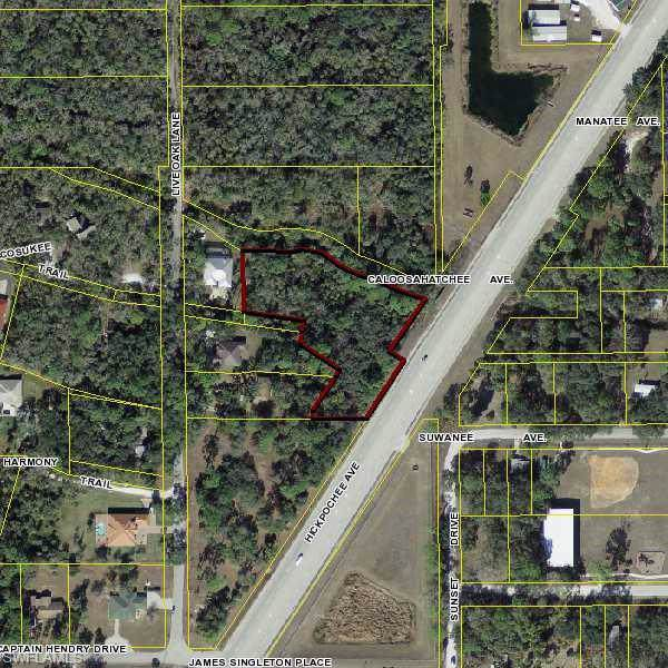 980 W Hickpochee Avenue, Labelle, FL 33935 (MLS #219075822) :: BonitaFLProperties