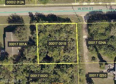 305 W 6th St, Lehigh Acres, FL 33972 (#219076648) :: The Dellatorè Real Estate Group