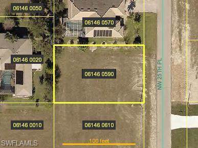 2530 NW 25th Pl, Cape Coral, FL 33993 (MLS #219076939) :: Palm Paradise Real Estate