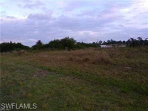 7028 Brazil Cir, Labelle, FL 33935 (MLS #219080585) :: Clausen Properties, Inc.