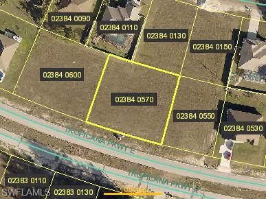 549 Tropicana Pky E, Cape Coral, FL 33909 (MLS #219080975) :: #1 Real Estate Services