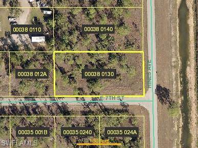 701 Hines Ave, Lehigh Acres, FL 33972 (#219081844) :: Southwest Florida R.E. Group Inc