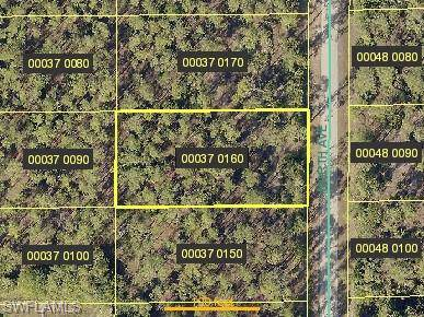 1507 North Ave, Lehigh Acres, FL 33972 (#219081853) :: Southwest Florida R.E. Group Inc