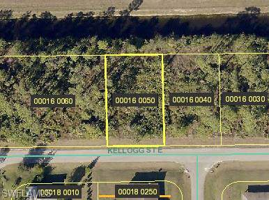 971 Kellogg St E, Lehigh Acres, FL 33974 (MLS #219081875) :: #1 Real Estate Services