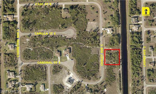 373 Chalet Ave S, Lehigh Acres, FL 33974 (MLS #219082059) :: Palm Paradise Real Estate