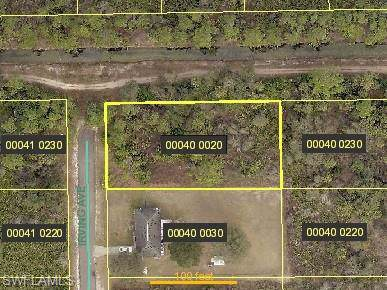 2320 Irving Ave, Alva, FL 33920 (MLS #219082139) :: RE/MAX Realty Team