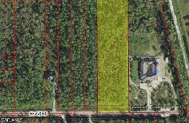 4745 4th Ave NE, Naples, FL 34120 (MLS #219084875) :: Clausen Properties, Inc.