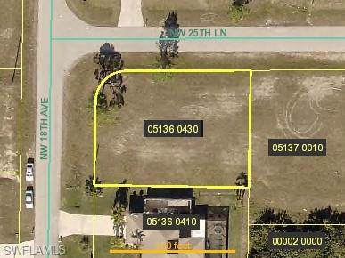 2539 NW 18th Ave, Cape Coral, FL 33993 (MLS #220002856) :: Clausen Properties, Inc.