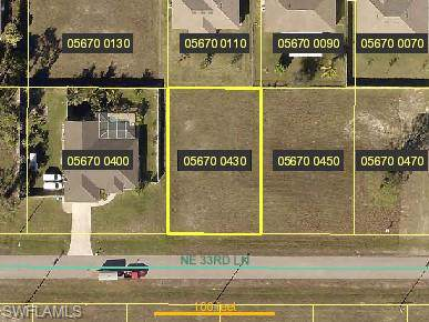 2217 NE 33rd Ln, Cape Coral, FL 33909 (MLS #220003467) :: The Naples Beach And Homes Team/MVP Realty