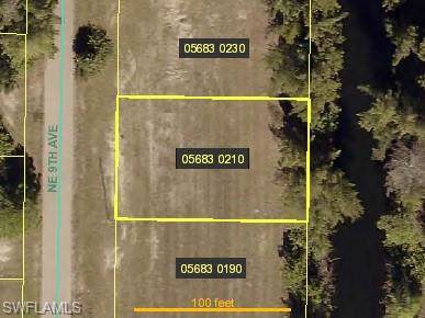 4019 NE 9th Ave, Cape Coral, FL 33909 (MLS #220004954) :: The Naples Beach And Homes Team/MVP Realty