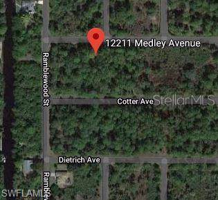 12211 Medley Ave, Port Charlotte, FL 33953 (#220005416) :: The Dellatorè Real Estate Group