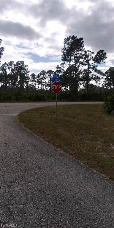 1262 Barnet Ave, Fort Myers, FL 33913 (MLS #220005873) :: The Keller Group