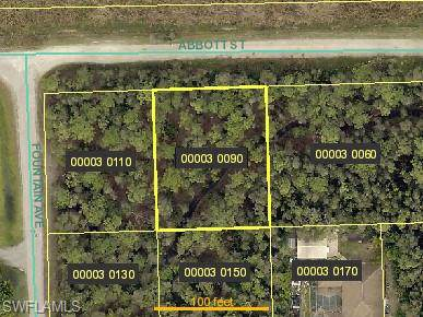6616 Abbott St, Fort Myers, FL 33966 (#220006299) :: The Dellatorè Real Estate Group