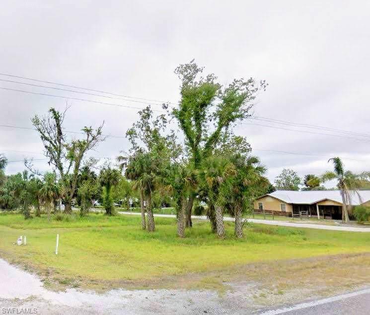 2997 County Road 78 - Photo 1