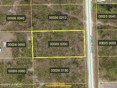 1115 James Ave, Lehigh Acres, FL 33936 (MLS #220008679) :: RE/MAX Realty Team