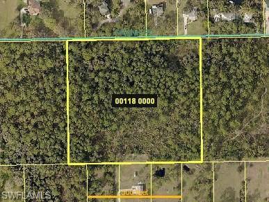 17700 Frank Rd, Alva, FL 33920 (MLS #220009905) :: Clausen Properties, Inc.